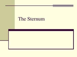 The Sternum