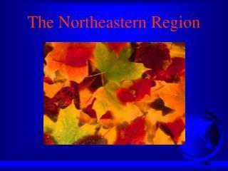 The Northeastern Region
