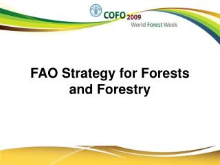 FAO Strategy for Forests and Forestry