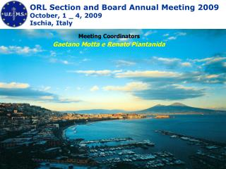 ORL Section and Board Annual Meeting 2009 October, 1 _ 4, 2009 Ischia, Italy