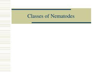 Classes of Nematodes
