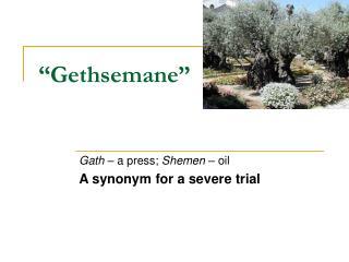 """""""Gethsemane"""""""