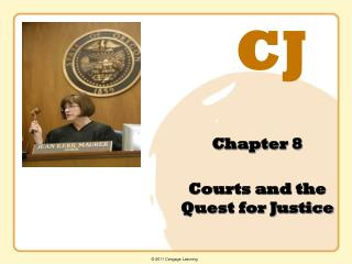 Chapter 8 Courts and the Quest for Justice