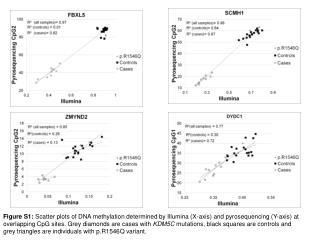 Figure S6:  Regional DNA methylation in  SCMH1   promoter