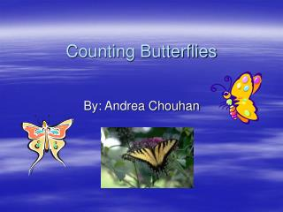 Counting Butterflies