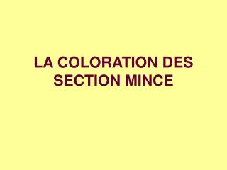 LA COLORATION DES SECTION MINCE