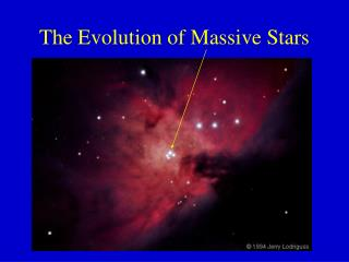 The Evolution of Massive Stars