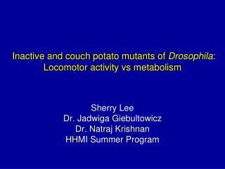 Inactive and couch potato mutants of  Drosophila : Locomotor activity vsmetabolism