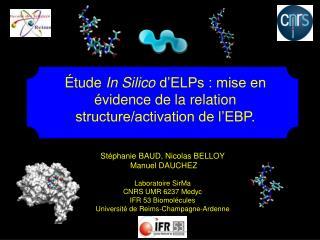 St é phanie BAUD, Nicolas BELLOY  Manuel DAUCHEZ Laboratoire SirMa CNRS UMR 6237 Medyc  IFR 53 Biomolécules  Université