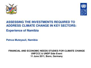 ASSESSING THE INVESTMENTS REQUIRED TO ADDRESS CLIMATE CHANGE IN KEY SECTORS:  Experience of Namibia Petrus Muteyauli, N