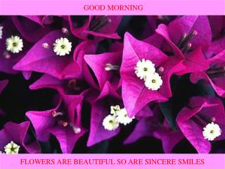 FLOWERS ARE BEAUTIFUL SO ARE SINCERE SMILES