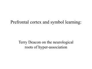 Prefrontal cortex and symbol learning: