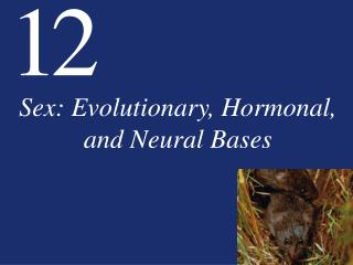 Sex: Evolutionary, Hormonal, and Neural Bases