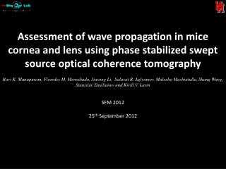Assessment of wave propagation in mice cornea  and lens  using phase stabilized swept source optical coherence tomograp