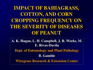 IMPACT OF BAHIAGRASS, COTTON, AND CORN CROPPING FREQUENCY ON THE SEVERITY OF DISEASES OF PEANUT