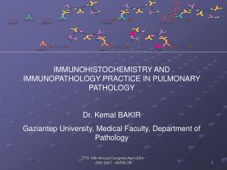 IMMUNOHISTOCHEMISTRY AND IMMUNOPATHOLOGY PRACTICE IN PULMONARY PATHOLOGY Dr. Kemal BAKIR Gaziantep University, Medical