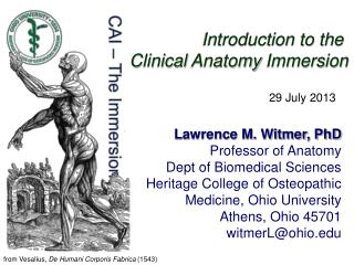 Introduction to the  Clinical  Anatomy  Immersion