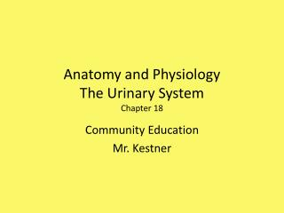 Anatomy and Physiology The Urinary System Chapter 18