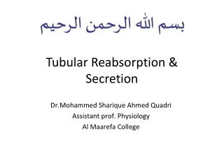 Tubular Reabsorption & Secretion