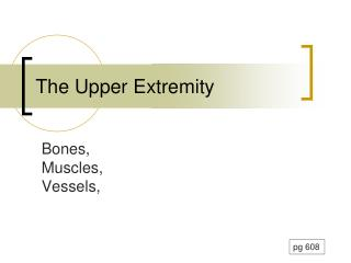 The Upper Extremity