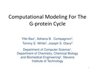 Computational Modeling For The G-protein Cycle