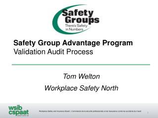 Safety Group Advantage Program Validation Audit Process
