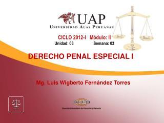 Mg. Luis Wigberto Fernández Torres
