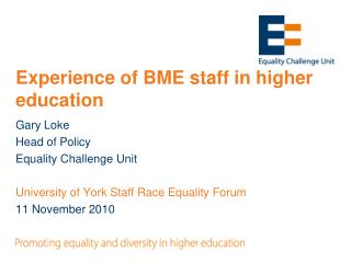Experience of BME staff in higher education