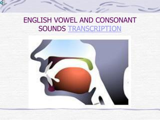 ENGLISH VOWEL AND CONSONANT SOUNDS  TRANSCRIPTION