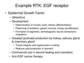 Example RTK: EGF receptor