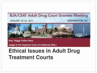 Ethical Issues in Adult Drug Treatment Courts