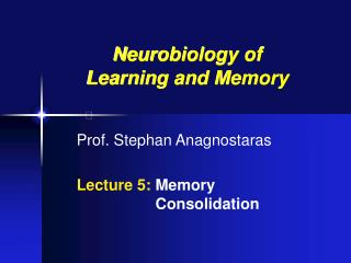 Prof. Stephan Anagnostaras Lecture 5:  Memory 			  Consolidation