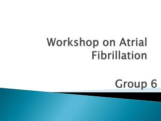 Workshop on Atrial Fibrillation