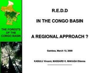 THE FORESTS OF THE CONGO BASIN