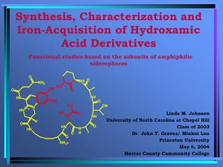 Synthesis, Characterization and Iron-Acquisition of Hydroxamic Acid Derivatives  -Functional studies based on the subun