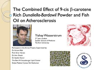 The Combined Effect of 9-cis  b -carotene Rich  Dunaliella- Bardawil  Powder and Fish Oil on Atherosclerosis