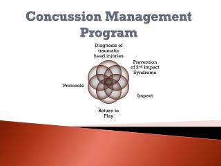 Concussion Management Program