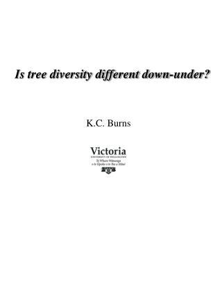 K.C. Burns