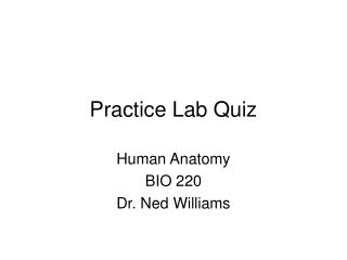 Practice Lab Quiz