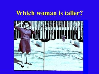 Which woman is taller?