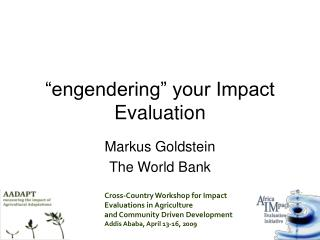 �engendering� your Impact Evaluation