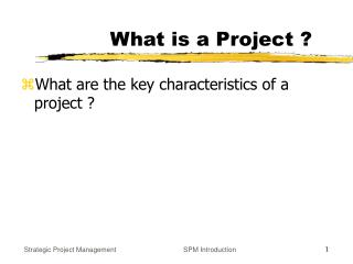 What is a Project ?