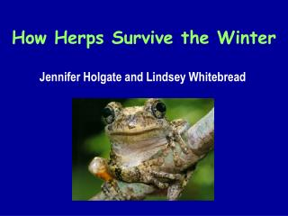 How Herps Survive the Winter