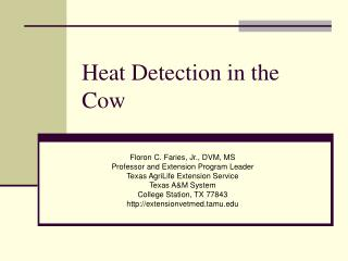 Heat Detection in the Cow