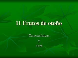 11 Frutos de otoño