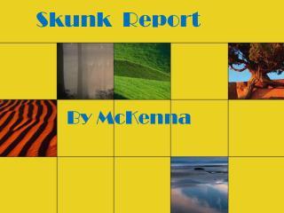 Skunk  Report