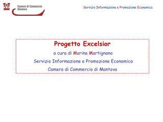 Progetto Excelsior a cura di  M arina  M artignano   Servizio Informazione e Promozione Economica Camera di Commercio d