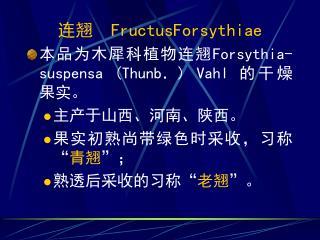 """连翘   FructusForsythiae 本品为木犀科植物连翘 Forsythia-suspensa (Thunb.) Vahl  的干燥果实。 主产于山西、河南、陕西。 果实初熟尚带绿色时采收,习称 """" 青翘 """" ; 熟透后采收的习"""
