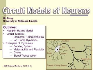 Circuit Models of Neurons
