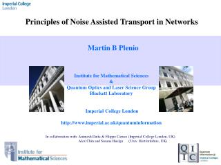 Principles of Noise Assisted Transport in Networks